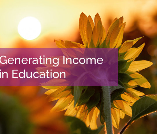Generating Income in Education