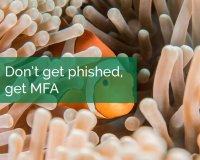 Don't Get Phished, Get MFA