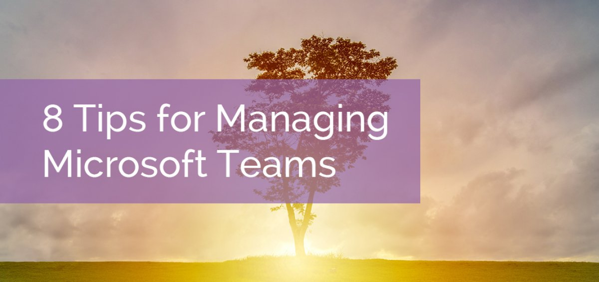 8 Tips for Managing Microsoft Teams