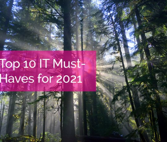 The Top 10 IT Must-Haves for 2021