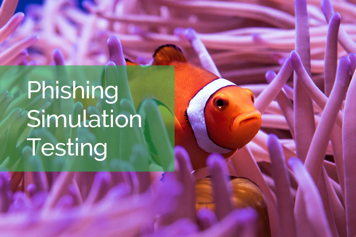 Phishing Simulation Testing